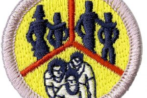 Family Life Merit Badge Counseling